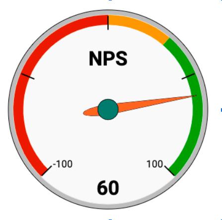 WP Rocket NPS Score